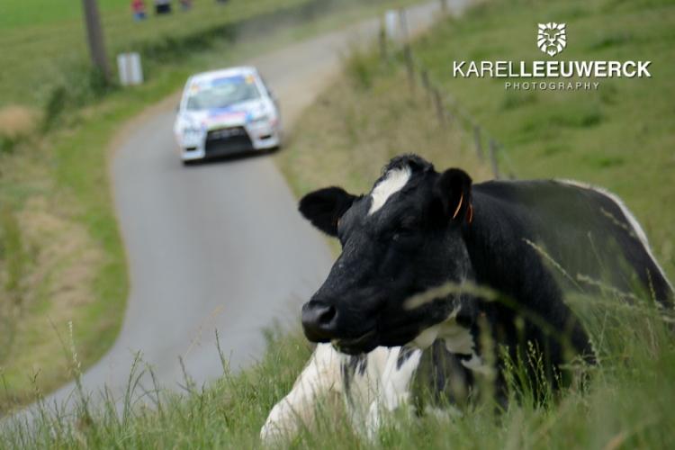 Ypres Rally: Een stand van zaken